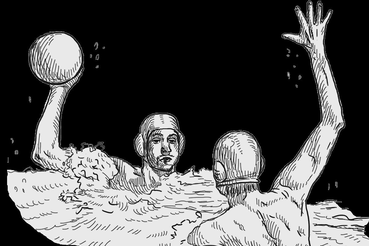 Ilustración waterpolo
